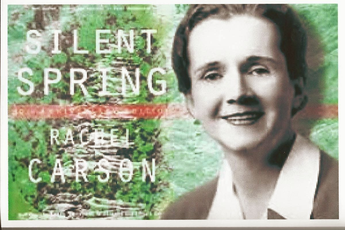 an article on silent spring