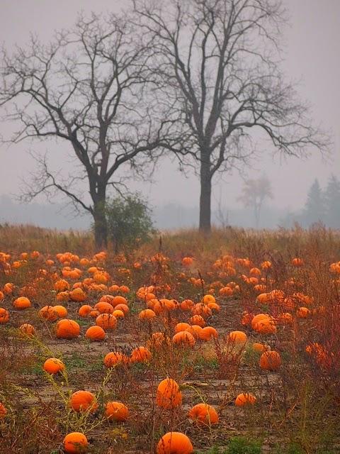 Oooey Gooey Ideas for Halloween Decor