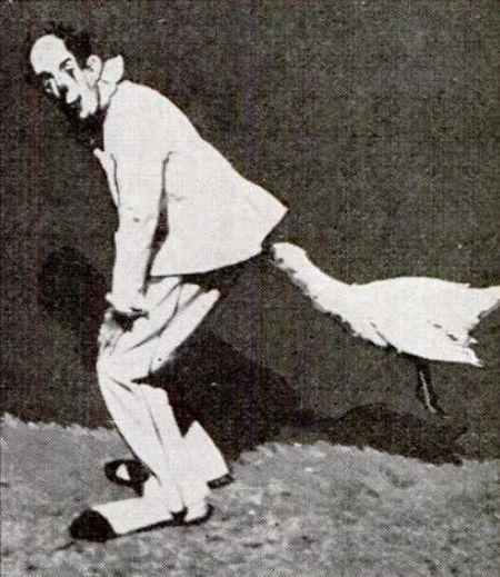 K 9 Golden Retriever Funny Goose picture |F...