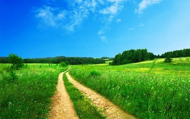 Bible Resources - Beautiful Country Dirt Road Scenery