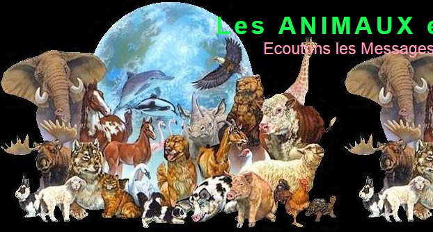 MESSAGES ANIMALIERS