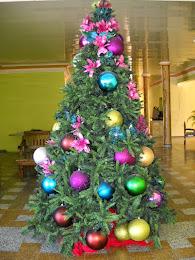 Feliz navidad les desea ecos del sur