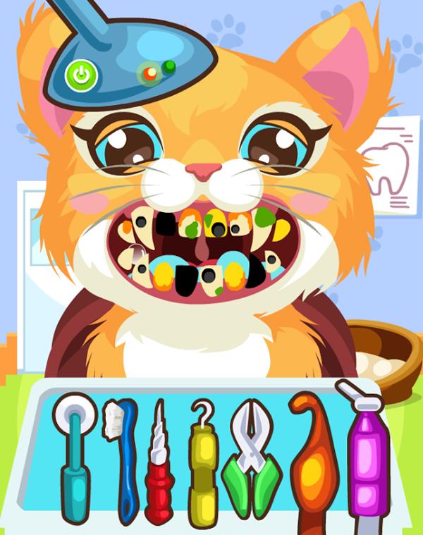 Kedi Diş Ameliyatı