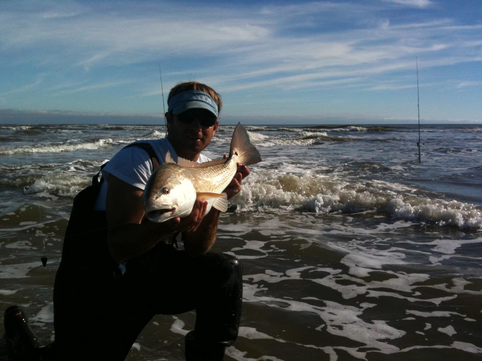 Myrtle beach fishing report surf fishing nov 2012 for Fishing report myrtle beach