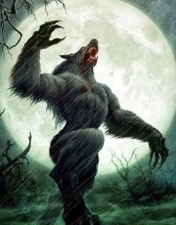 El hombre lobo, también conocido como licántropo, es una criatura legendaria presente en muchas culturas independientes a lo largo del mundo. Se ha dicho que este es el más universal de todos los mitos (probablemente junto con el del vampiro), y aún hoy, mucha gente cree en la existencia de los hombres lobo o de otras clases de «hombres bestia». Todas las características típicas de aquel animal - como son la ferocidad, la fuerza, la astucia y la rapidez- son en ellos claramente manifiestas, para desgracia de todos aquellos que se cruzan en su camino. Según las creencias populares, este hombre lobo puede permanecer con su aspecto animal únicamente por espacio de unas cuantas horas, generalmente cuando sale la luna llena.
