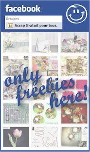 facebook groupe special freebies