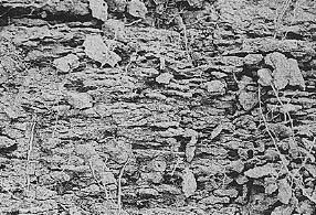 Struktur tanah lempeng