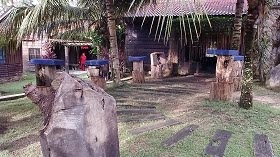 GALERI SARANG KOLONI LEBAH KELULUT DI SYAMILLE AGROFARM & RESORT.
