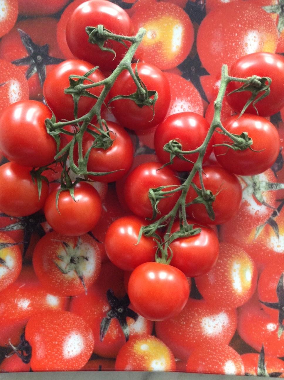 zeitschriftenwurm wann gibt es endlich gescheite tomaten. Black Bedroom Furniture Sets. Home Design Ideas