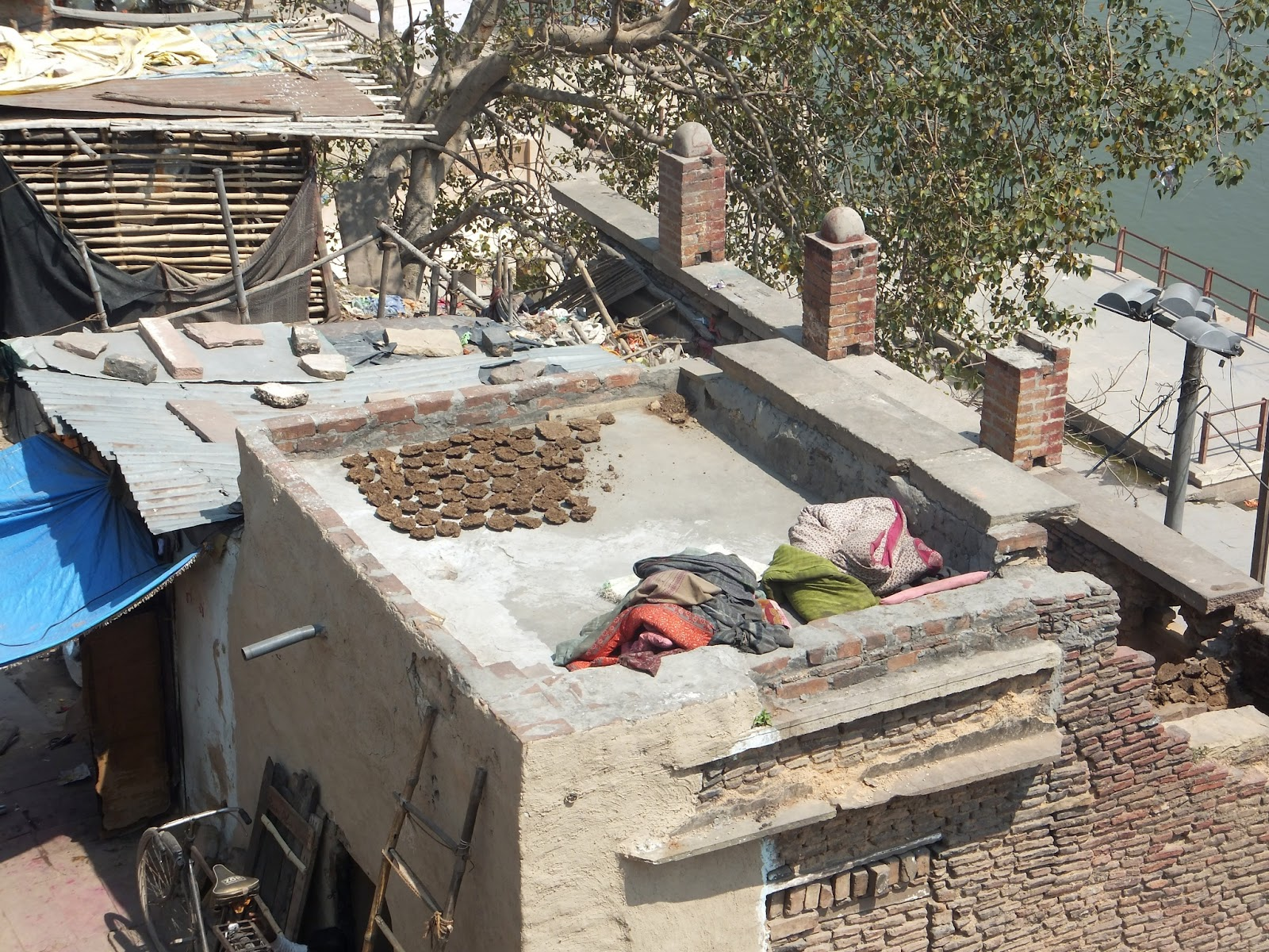Навоз сушат на крыше дома