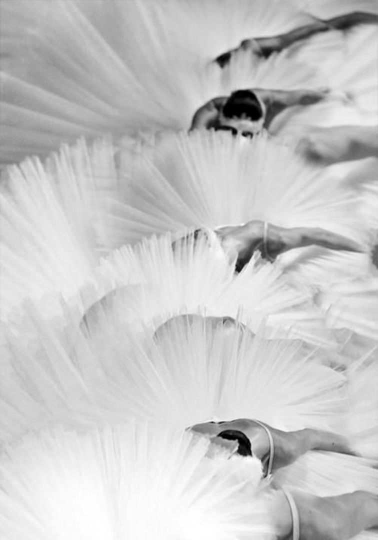 Ballerinas in a sea of tutus, dancers