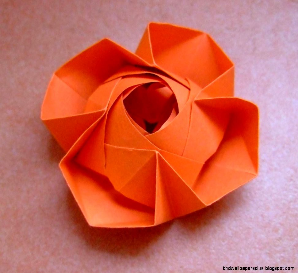 origami flower  Flickr   Photo Sharing