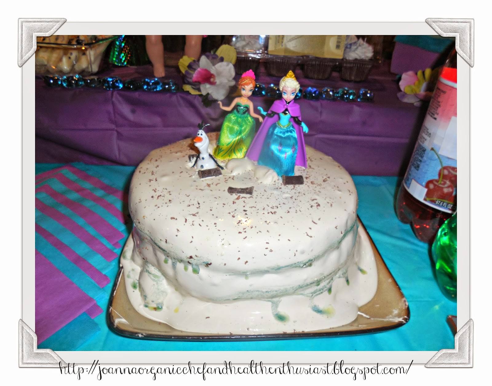 JoAnna GlutenFree Chef and Health Enthusiast Gabby s Frozen Party