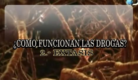 Como funcionan las drogas. Extasis [Documental | AVI | Español | 361.84 MB]