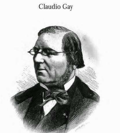 Claude GAY