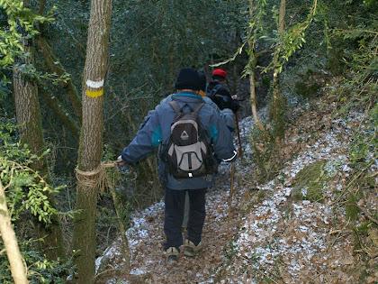 En els trams més drets, el corriol està protegit amb baranes de lianes