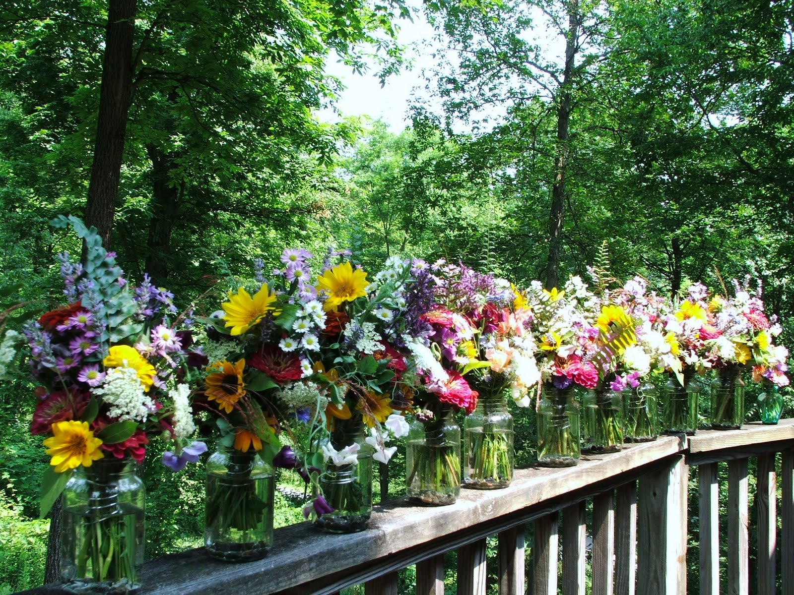 Adirondack Flower Farm