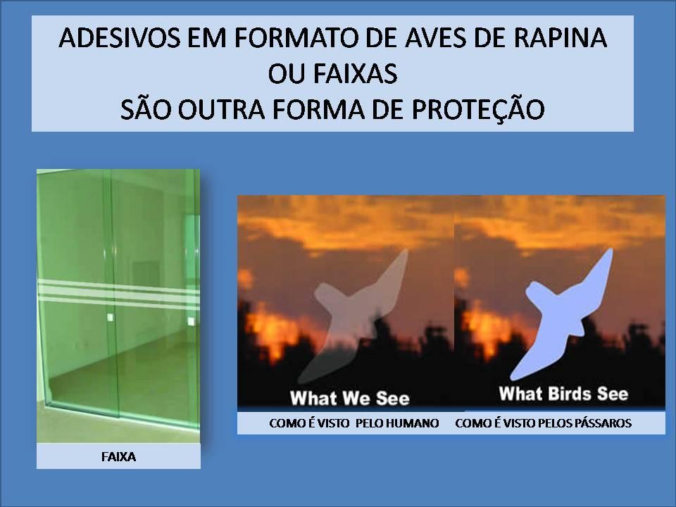Http Sf Planning Org Standards Bird Safe Buildings