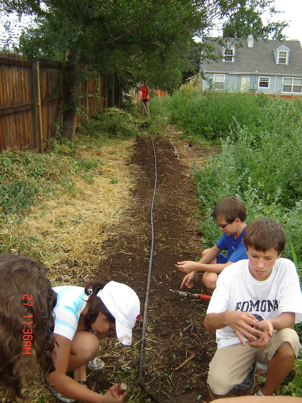 Professor at Metro State University Denver - Barbara Moore   harvest ...
