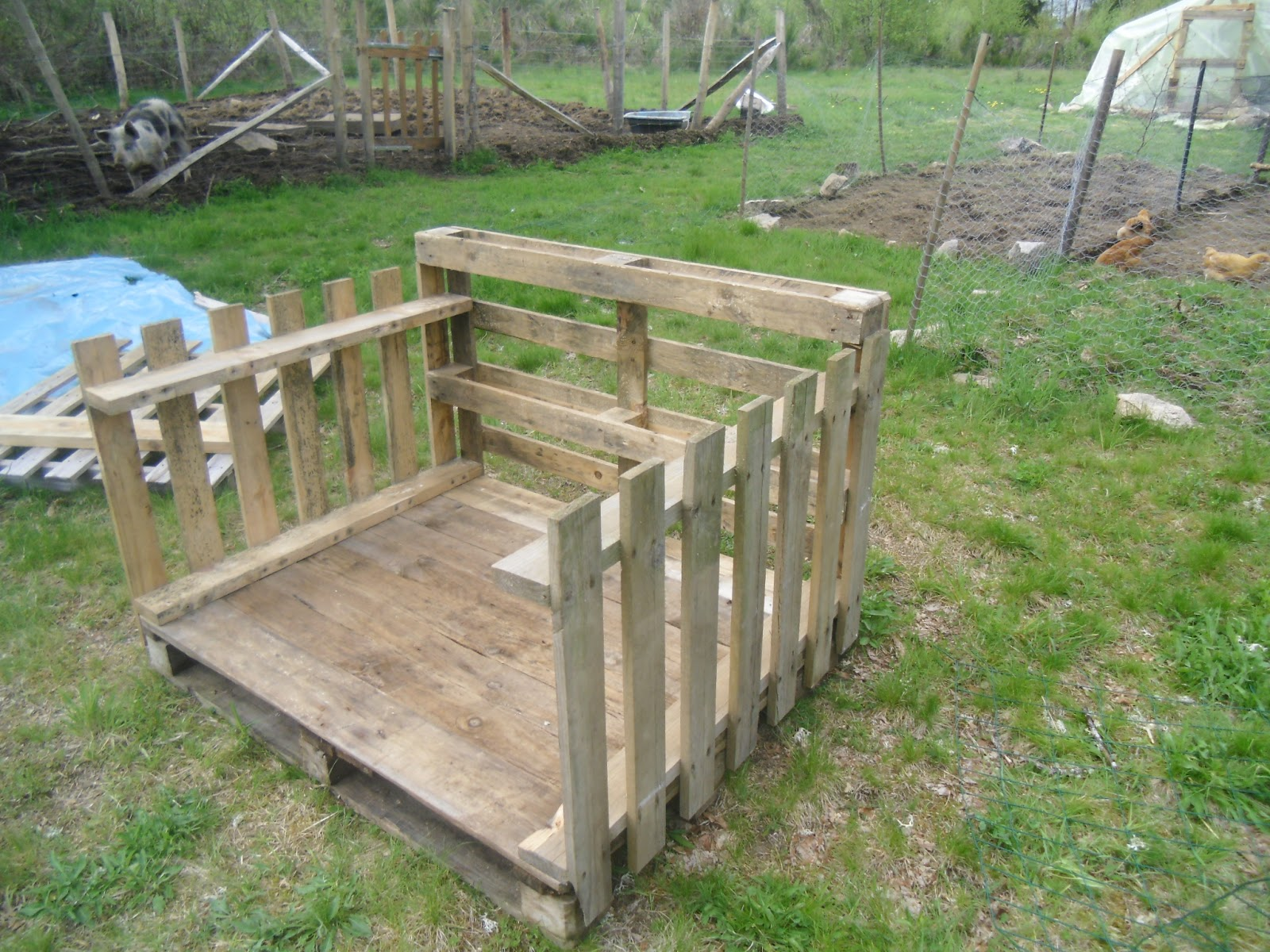 Plans for duck houses free home design and style for Duck shelter designs