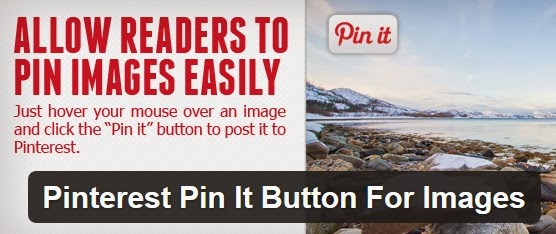 Wordpress plugin pinterest pin it button f r bilder for Klassisches haushaltsbuch