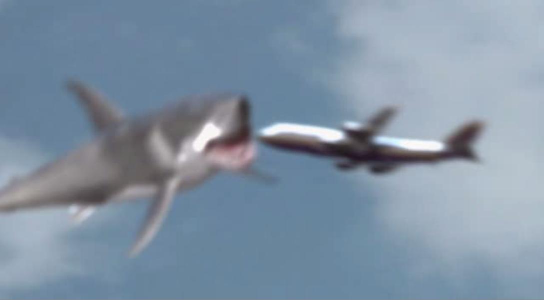 Mega Shark Vs Giant Octopus Plane Gif The shark takes out an