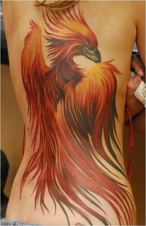 Phoenix Tattoo - Tatuagem de Fênix