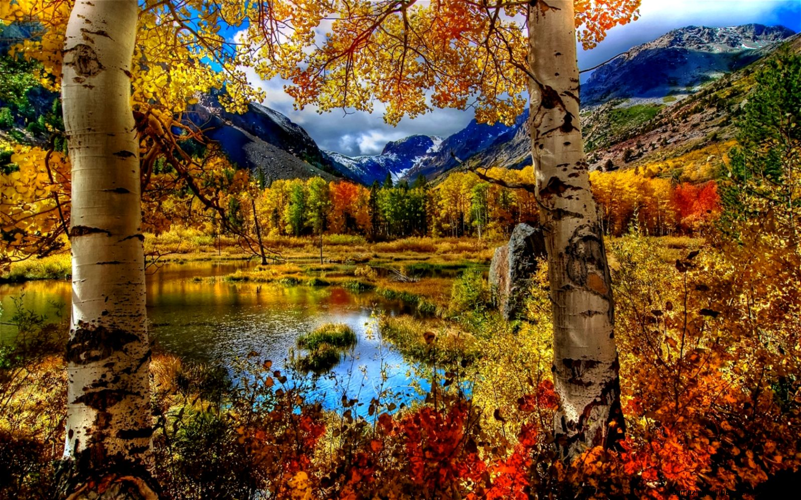 Stunning Autumn Mountain Scenery widescreen wallpaper  Wide