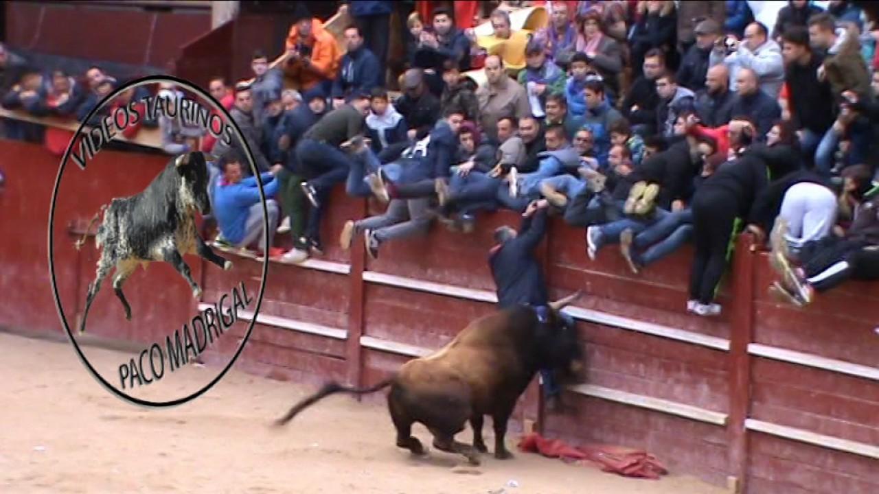 VIDEOS TAURINOS PACOMADRIGAL