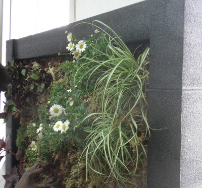 formación jardines verticales