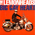 Lemonheads - Big Gay Heart EP