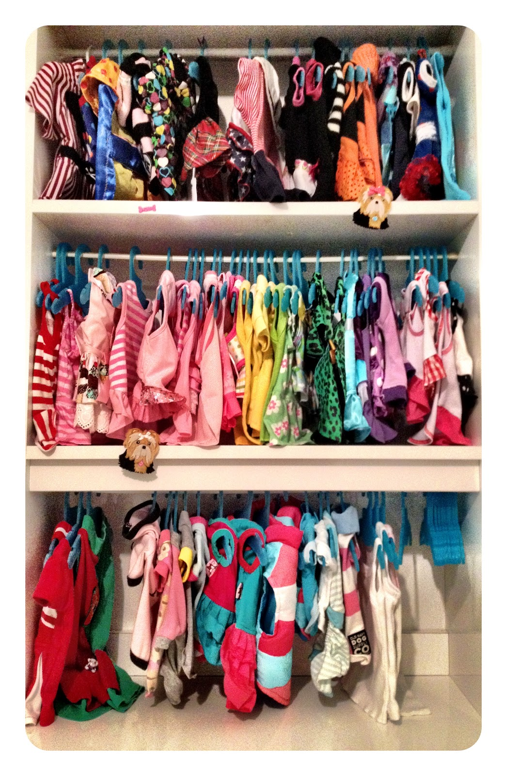 A Few Months Ago I Shared A Quick And Easy Way To Organize Your Pets Closet.  Since Than My Petu0027s Closet Has Grown And Relocated To A Room Of Itu0027s Own.