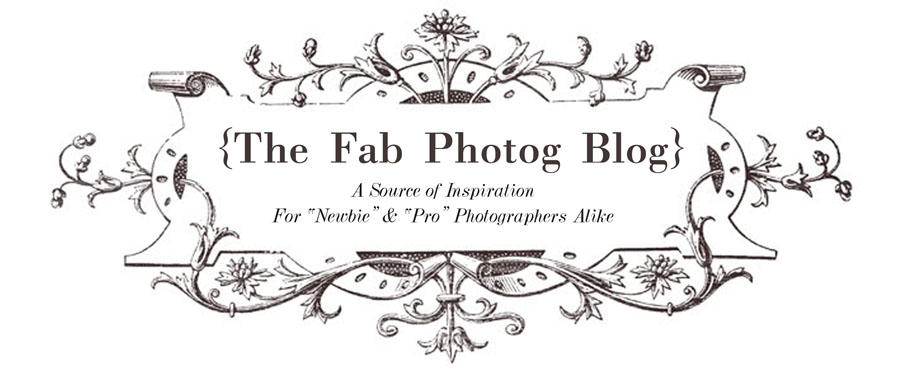 The Fab Photog Blog