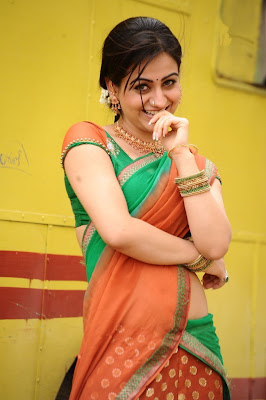 aksha in saree actress pics
