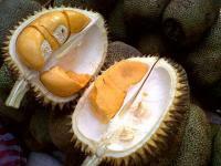 Ternyata Durian Monthong 'Thailand' Itu Asli Indonesia