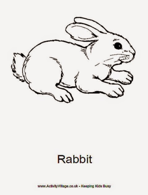 Coloring Picture Of Rabbit | Free Coloring Pictures