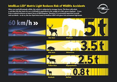 Το Opel IntelliLux LED® Matrix Light περιορίζει τον κίνδυνο συγκρούσεων με διερχόμενα ζώα