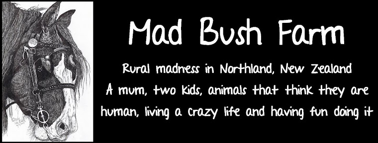 Mad Bush Farm