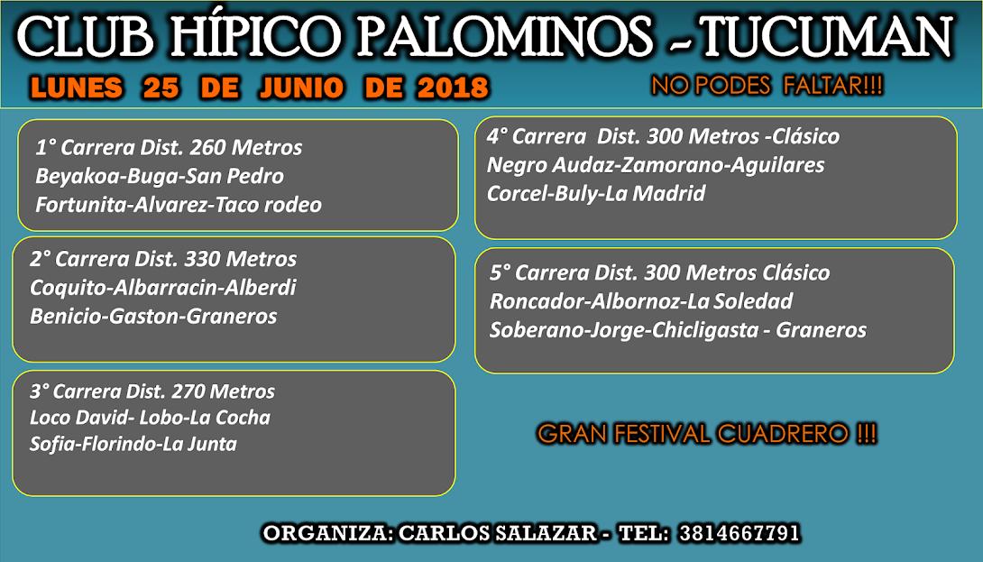 25-06-18-HIP. PALOM-PROG.