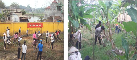 Kinh nghiệm xây dựng vườn rau, quả tại trường mầm non