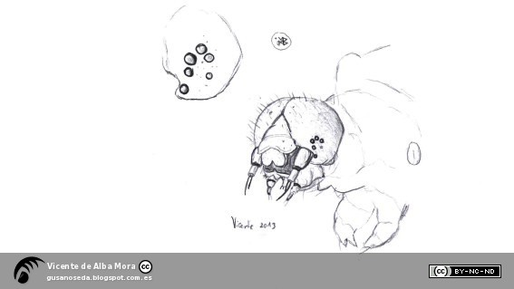 Gusanos de Seda Pueden ver los gusanos de seda