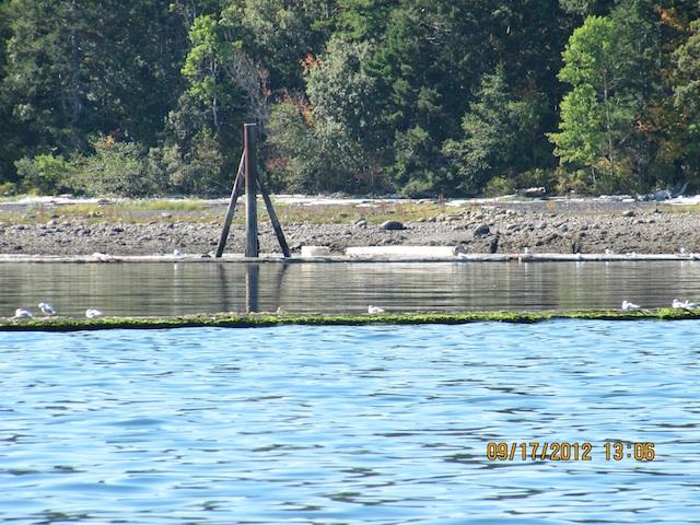 Island Highway Union Bay Bc