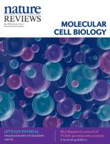 Metilación Dinámica del DNA en Salud y Enfermedad