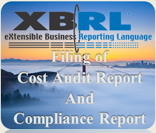 Filing of Cost Audit and Compliance Report