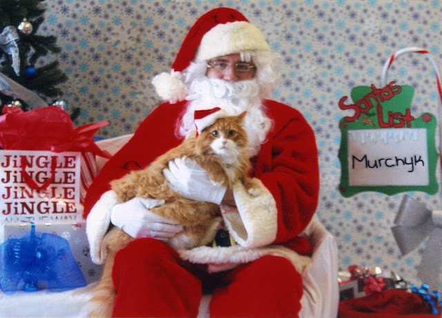 Murchyk the Cat and Santa Claus