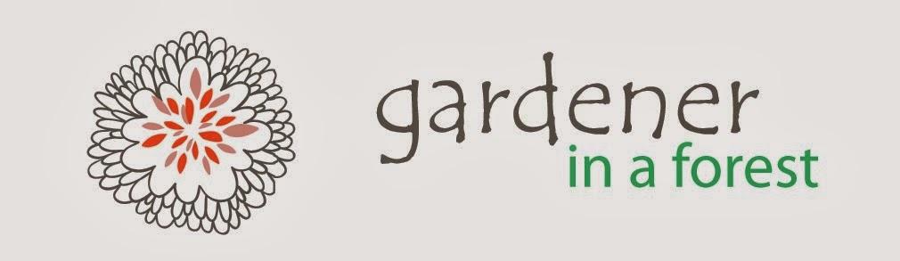 Gardener in a Forest