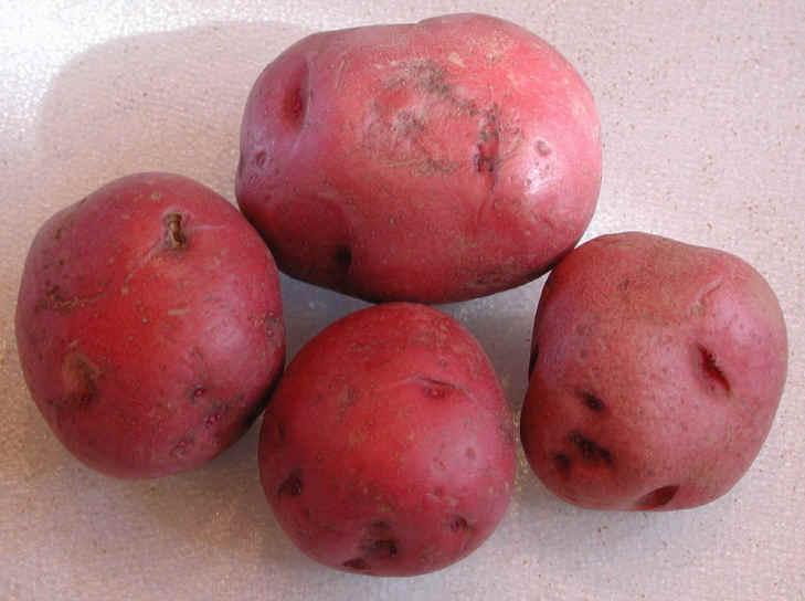 Red Skin Potato Nutrition