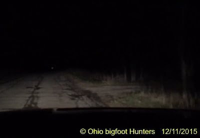 Ohio Bigfoot Sighting Report 2015