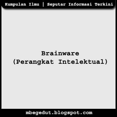 Brainware (Perangkat Intelektual)