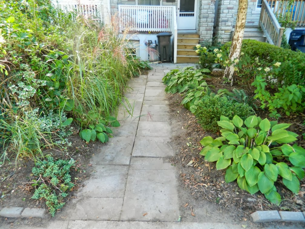Toronto front garden cleanup Woodfield Rd. after  Paul Jung Gardening Services